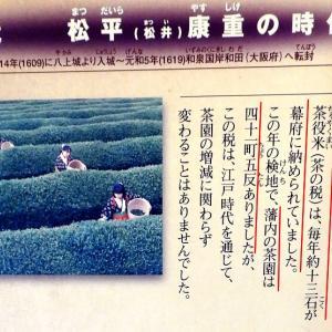 篠山城(日本100名城) 7   篠山城エピソード