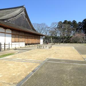 篠山城(日本100名城) 8 二の丸御殿跡
