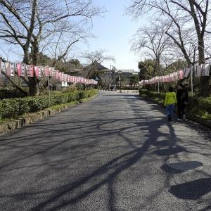 篠山城(日本100名城) 19 大手馬出跡から篠山街道