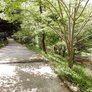 伏見城 8 北堀から御花畑山荘