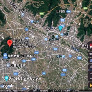 金山城(日本100名城) 1 歴史