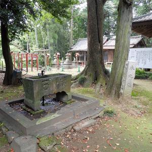 金山城(日本100名城) 9 実城(本丸)