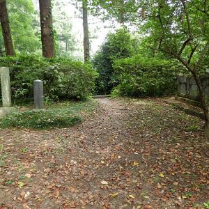 箕輪城(日本100名城) 5 御前曲輪から新曲輪