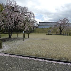 山形城(日本100名城) 4    本丸一文字門まで