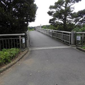 千波湖と常磐線電車