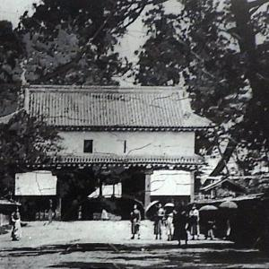 佐倉城(日本100名城) 3 大手門跡から城址公園センターまで