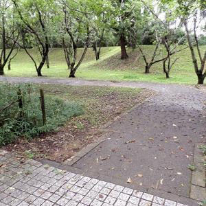 佐倉城(日本100名城) 9 本丸台所門跡から出丸まで