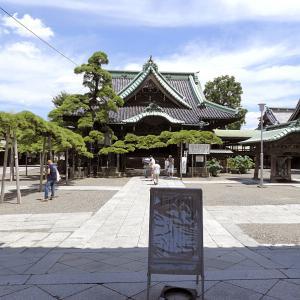柴又 4 二天門から瑞龍の松・帝釈堂