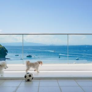 週末別荘暮らし『THE HOUSE Koajiro marina suite』