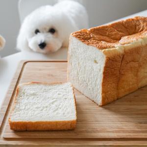 初めて買ってみた高級食パン『勝どき花みつ』