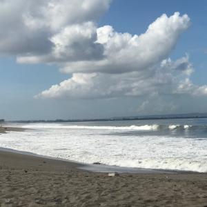 殺菌効果がありそうなマタハリ&ラウット(太陽と海)