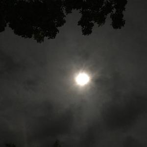 霽月(せいげつ)のビーバームーン