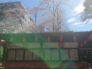 田無神社の毎月1日の無料月次祭に参列しています^^