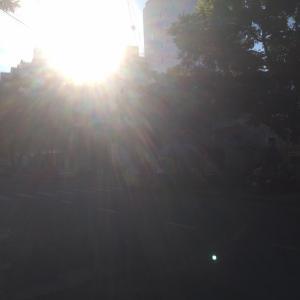 日ヨマタ上レ。