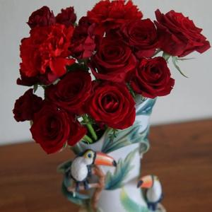 真っ赤な切りバラとコガネムシの幼虫( ;∀;)