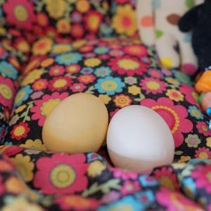 手作り偽卵と未熟なママン♡