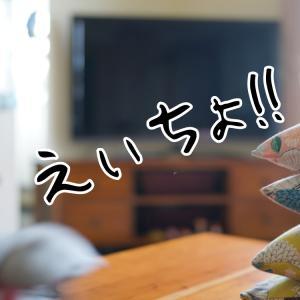 ラシッサとハピア指紋手垢の検証/身が~る~
