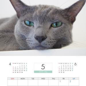 【ねころぐ 2020年カレンダー】が楽天でも販売が始まりました。&カレンダーの写真公開