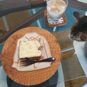 サワードウとキャロットケーキの美味しいパン屋さん 「Universal Bakehouse」