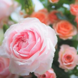 お誕生日の手作りディナーと薔薇の花