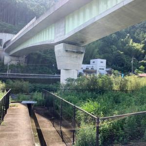 大内山川 増水中
