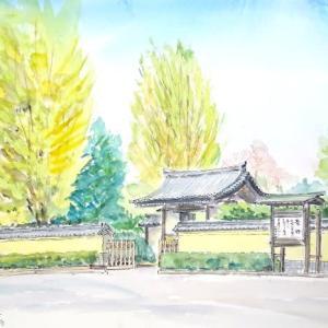 爽快な秋空の下、池上本門寺で久々のスケッチでした