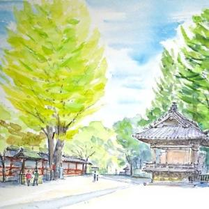 天候に恵まれた一日、根津神社でのスケッチです