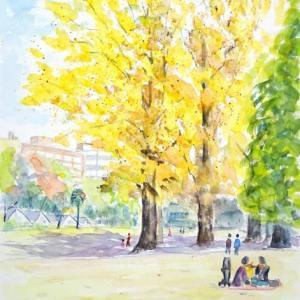 秋色の新宿御苑でゆったりと絵を描けます