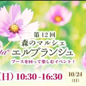 9/26 魔法の癒しの森のオンラインマルシェ