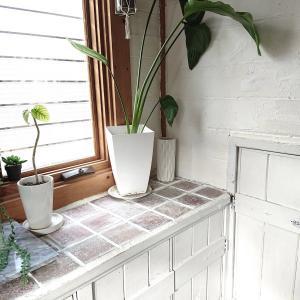 ☆★セリアでお買い物&玄関床掃除の問題☆★