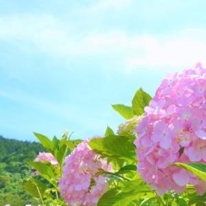 ★5月の人気記事ランキング★