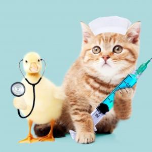 初めての予防接種