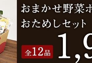 【おためし】らでぃっしゅぼーやのお試しセット1980円を注文してみました♡