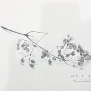 赤い実と石ころ〜青江画塾にて