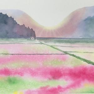れんげ畑〜春崎陽子YouTube講座1