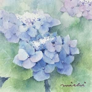 小さな額紫陽花を描く~ブルー系で