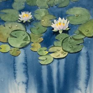睡蓮で水遊び〜♪