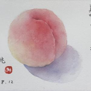 岡山の桃〜ハガキサイズで♡
