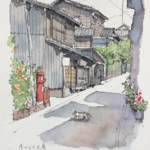 相川京町通り〜猫がいる風景♪