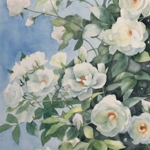 白い薔薇揺らぐ〜青江三原色