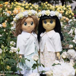 春薔薇の時期 SONY NEX-3 + Zeiss Color-Pantar 45mmF2.8 @F5.6
