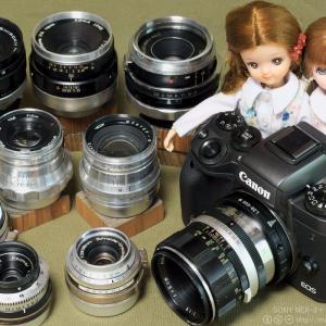 遊び友だち Canon FD 50mm F2 @F8