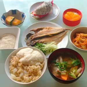 玄米大根飯のとろろご飯と麻婆豆腐