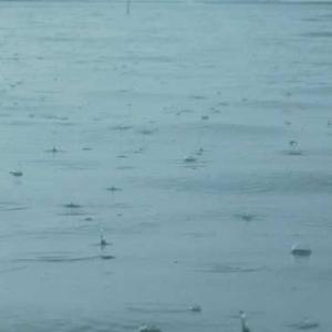 雷を伴った強い雨 そろそろ梅雨明けか