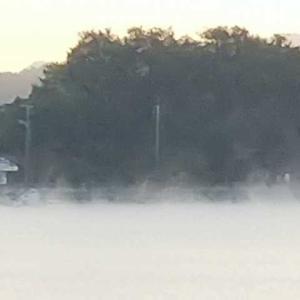 今シーズン初気嵐(蒸気霧)の朝 白いベールに覆わる海