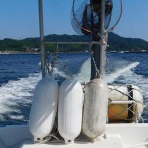 涼を求めて海に 波を蹴散らし船進む