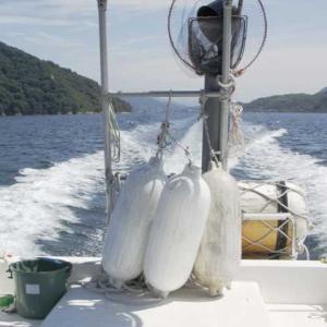 波を蹴散らし試験航行 海の風は夏の香り