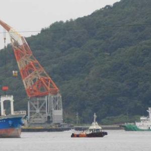 台風14号接近 避難する船少ない湾内