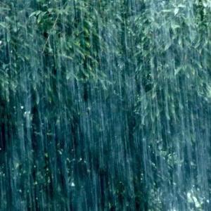 突然のゲリラ豪雨 軒先借りて雨宿り