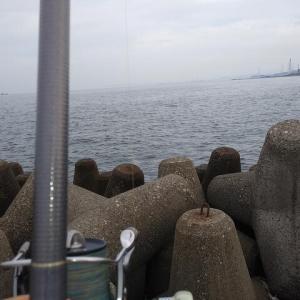 高砂港のキス